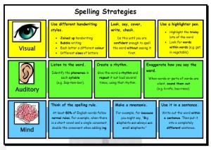 Literacy Focus Spelling Strategies